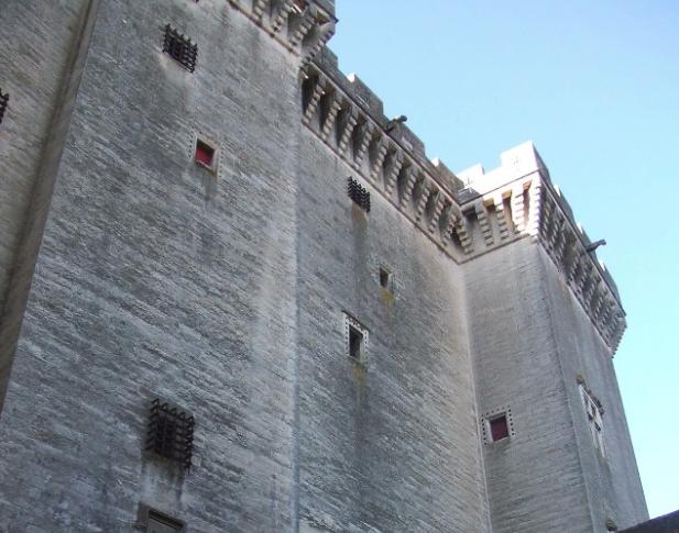 Château de Tarascon1